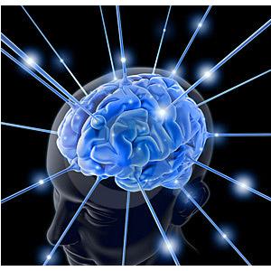 Connexion cerveau surdoué